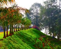 Beautiful garden with lush green trees. Beautiful garden  lush green trees red colorful background scenic nobody indiatourism incredibleindia nature greenery stock images