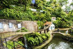 Beautiful Garden at Monte above Funchal Madeira. This wonderful garden is at the top of the cablecar from the seafront in Funchal. It is filled with trees Stock Photo