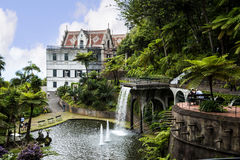 Beautiful Garden at Monte above Funchal Madeira. This wonderful garden is at the top of the cablecar from the seafront in Funchal. It is filled with trees Stock Photos
