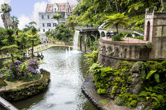 Beautiful Garden at Monte above Funchal Madeira. This wonderful garden is at the top of the cablecar from the seafront in Funchal. It is filled with trees Royalty Free Stock Image