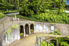 Beautiful Garden at Monte above Funchal Madeira. This wonderful garden is at the top of the cablecar from the seafront in Funchal. It is filled with trees Stock Images