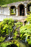 Beautiful Garden at Monte above Funchal Madeira. This wonderful garden is at the top of the cablecar from the seafront in Funchal. It is filled with trees Stock Photography