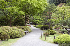 Beautiful garden path in Japanese Garden Royalty Free Stock Photos