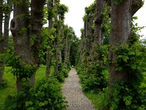 Beautiful garden path. Moesgaard garden Denmark Stock Photography