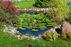 Beautiful Garden Pond royalty free stock photography