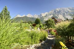 Beautiful garden in ramsau dachstein austria with mauntains in the back royalty free stock photos