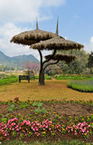 Beautiful garden scene Stock Images