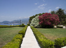 Beautiful garden on the seafront. Near the Sveti Stefan stock image