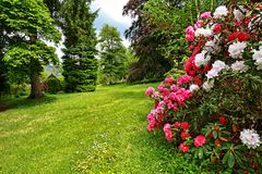 Beautiful garden in springtime stock photography