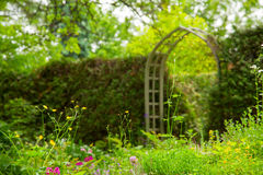 Beautiful Garden. Royalty Free Stock Photography