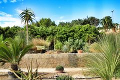 Beautiful garden under the sun in Nijar. Beautiful garden under the sun in summer in Nijar, Almeria, Spain stock photo