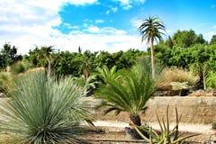 Beautiful garden under the sun in Nijar. Beautiful garden under the sun in summer in Nijar, Almeria, Spain stock photography