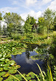 Beautiful garden with water-lilies pond Royalty Free Stock Photography