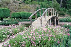 Beautiful Garden and a wooden bridge Royalty Free Stock Photos