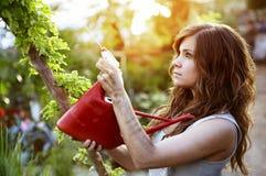Beautiful gardener Stock Image