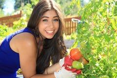 Beautiful gardener Stock Photos