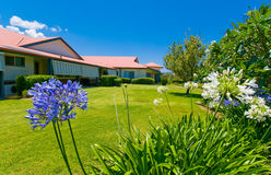 Beautiful gardens at back of house. Beautiful landscaped gardens and lawns in the backyard of a house Stock Photos