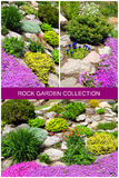 Beautiful gardens with flowers. Royalty Free Stock Photography