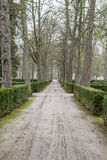 Beautiful gardens Palace of Aranjuez, Madrid, Spain. Green Royalty Free Stock Images