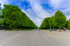 Beautiful gardens in Palace of Versailles, near Stock Photography