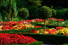 Beautiful gardens, Plymouth,UK Stock Photography