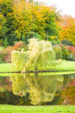 Beautiful Gardens Royalty Free Stock Image