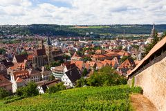Beautiful geman city and wine fields Stock Image
