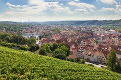 Beautiful geman city and wine fields Royalty Free Stock Photography