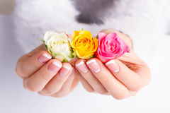 Beautiful gentle moon french manicure with colorful roses. Beautiful gentle moon french manicure with colorful roses on a white background stock image