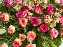 Beautiful gentle roses, Wedding bouquet. Art   background Royalty Free Stock Photography