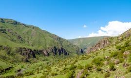 Beautiful Georgian landscape in summer. Stock Images