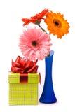 Beautiful gerber flowers in blue vase stock image