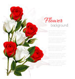 Beautiful getting card with colorful roses. Stock Photo