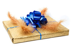 Beautiful gift Royalty Free Stock Images
