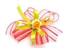 Beautiful gift bow Royalty Free Stock Image