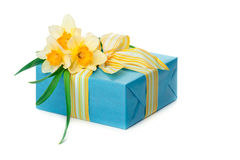 Beautiful gift box with a bunch of daffodils Stock Photo