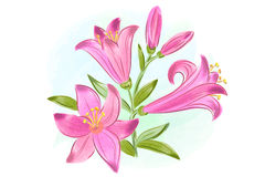 Beautiful gift card with pink watercolor lilies Stock Photography