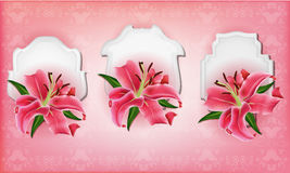Beautiful gift cards with pink lily. May be used as a Womans Day congratulation royalty free illustration