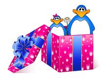 Beautiful gift with a penguins Stock Images