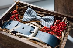 Beautiful gifts, a belt and a bow tie Stock Photos