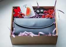 Beautiful gifts, a purse, cosmetics and a brooch Stock Photography