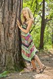 Beautiful girl. In a relict forest Royalty Free Stock Image