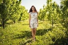 Walking brunette between trees. stock photography