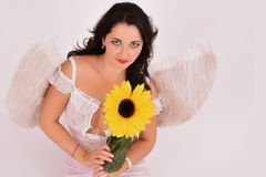 Beautiful girl angel holding a sunflower Stock Photos