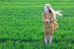 Free Beautiful Girl At The Field Stock Photos - 182762623