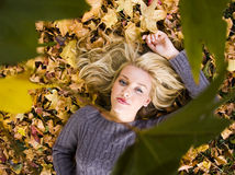 Beautiful girl in the Autumn fall. Beautiful girl under the Autumn trees Royalty Free Stock Photos