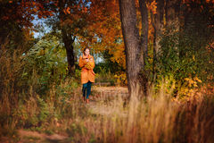 Beautiful girl in autumn forest stock image