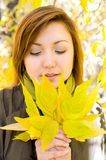 Beautiful girl with autumn leaves Royalty Free Stock Images