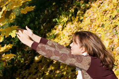 Beautiful girl with autumn leaves Stock Photography