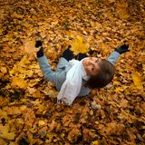A beautiful girl on the autumn leaves Stock Image